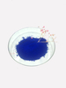 Blue Colorant High Heat Resistance High Acid Resistance Factory Directly Supply for Powder Coating